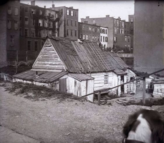 May 11, 1891. Madison Avenue at 77th Street. The home of a Mr. Blind Tom Foley, his wife and son. (Old Images of New York Group)