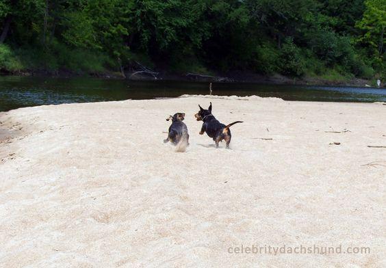 Beach race!