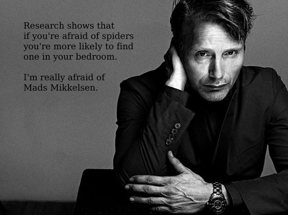I figure all my fellow Mads Mikkelsen fans will appreciate this ;)