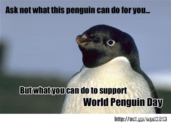 Kennedy penguin.: