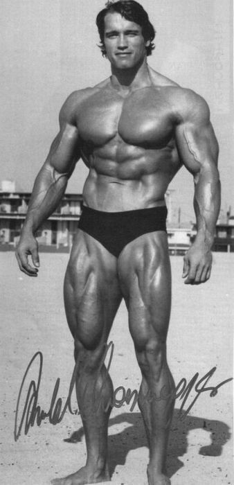 Young Arnold Schwarzenegger | ... وهو صغير - Young Arnold Schwarzenegger Young-Arnold-Schwarz