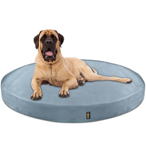 Orthopedic Waterproof Memory Foam Bed With Pillow Brown Large Memory Foam Dog Bed Round Dog Bed Dog Bed