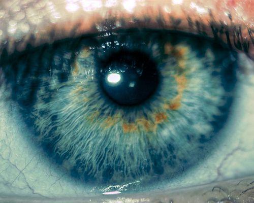 Eye by @Doug Wheller