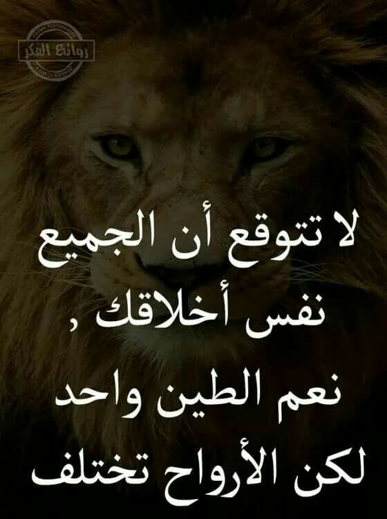 Pin By Rima Makia On كلمات راقت لي Quotes Arabic Quotes Life Quotes Quotes