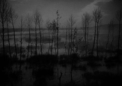 ivan's childhood - Tarkovsky