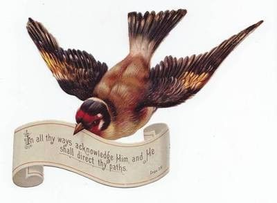 Bible Verse Goldfinch