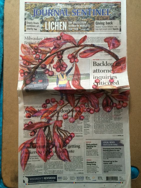 Drawing of plants on Newspaper