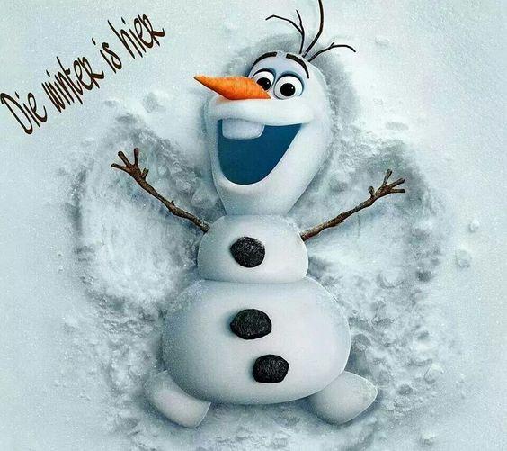 Pin by Brenda van Zyl on Funny | Olaf, Disney frozen olaf