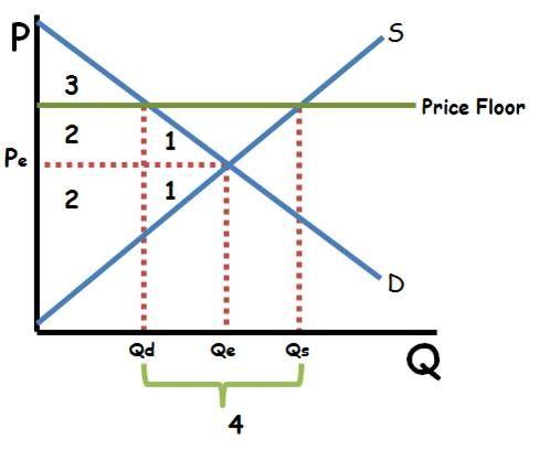 Price Floor Graphing Good Grades Economics