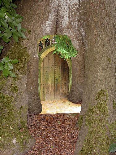 Fairy tree door my garden inspirations pinterest for Fairy doors for trees