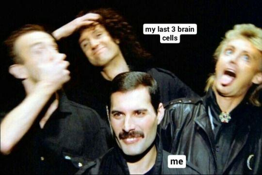 Queen band not gay humor
