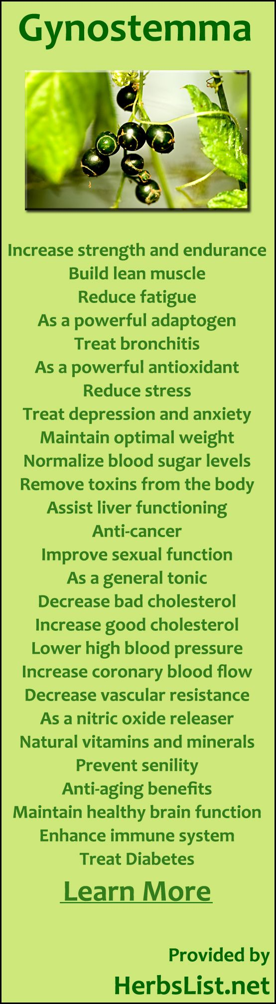 Gynostemma Uses For Health- cholesterol, blood pressure, bronchitis, fatigue, antioxidant, depression, anxiety and more