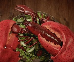 Giant Lobster Claws #lobster #costume #halloween #claws #lobsterclaws @giantlobsterclaws