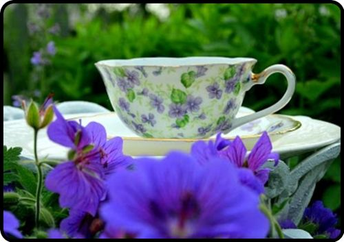 love my tea cups…