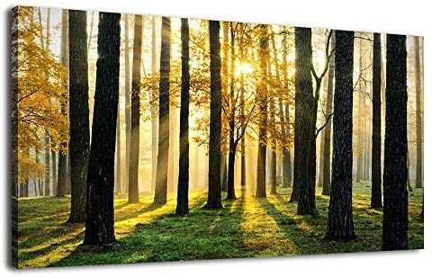 Amazon Com Artewoods Canvas Wall Art Forest Morning Painting Nature Pictures Panoramic Canvas Arotwork Sunshine Wo Forest Wall Art Wall Canvas Canvas Pictures