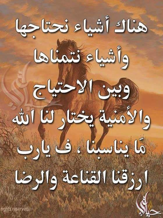 Pin By ملك احمد On Islam Life Quotes Quotes Wise
