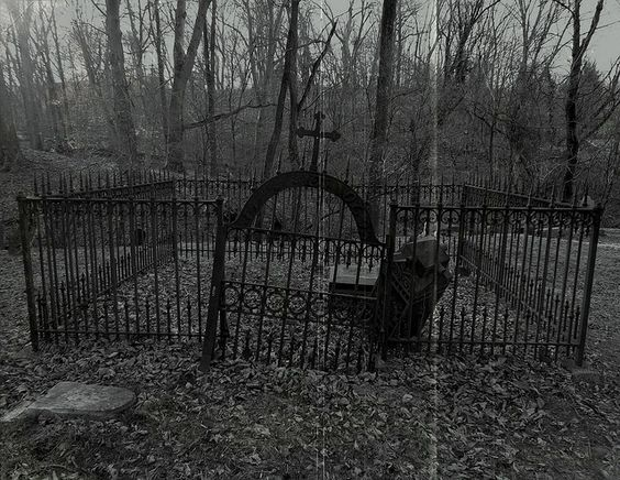 Lost Cemeteries of Howard County: Unknown Cemetery, Ellicott City, Maryland by The Lost Tourist, via Flickr