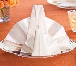 Quick and easy entertaining party ideas napkin folding for How to fold napkins into turkeys