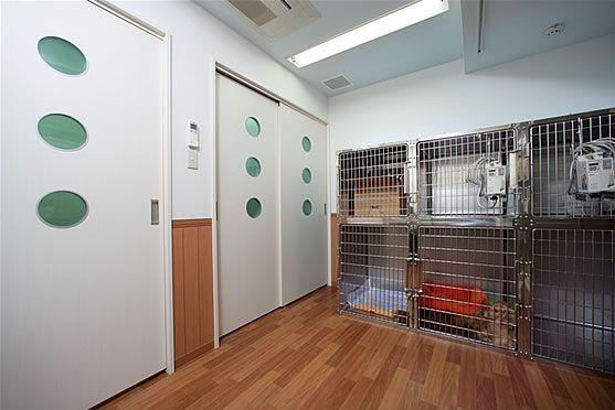 動物病院のペットホテル ポップな雰囲気のインテリアに リフォーム インテリア 犬の部屋