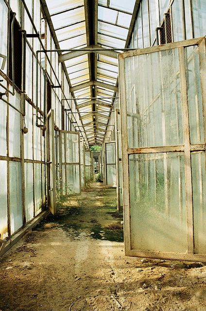 old greenhouse by Jaakaappi, via Flickr
