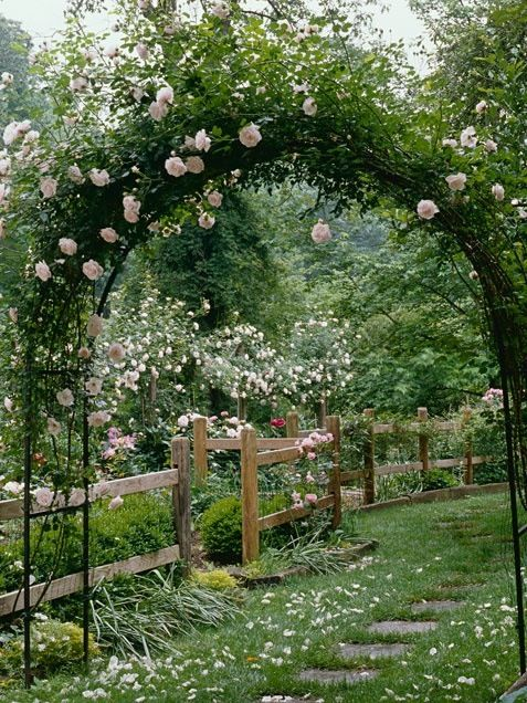 [truly beautiful...I would try to trade out flowers for (or intermix with them) flowering fruits and trees and other edible flowers.] Cottage garden with roses growing over an arch. I would plant a vegetable garden in the fenced off sections, but add chicken wire to keep the chooks out.