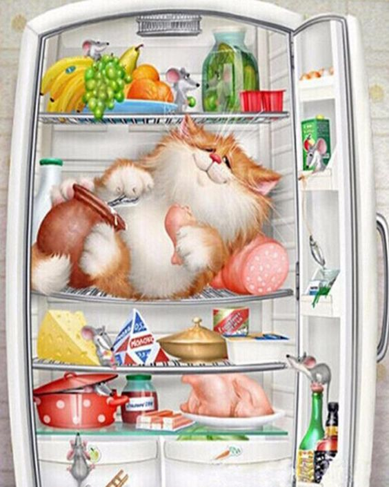 Diamond Painting refrigerator Greedy cat 5D DIY Diamond Embroidery Coloring By Numbers Set For Embroidery Stitch Pictures. Yesterday's price: US $8.41 (7.34 EUR). Today's price: US $5.55 (4.82 EUR). Discount: 34%.
