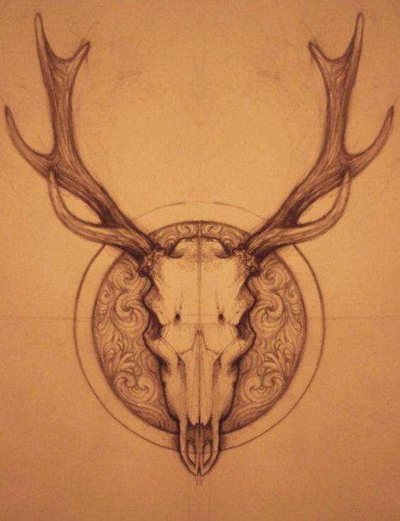 Crânes de cerfs, Crânes and Cerf on Pinterest