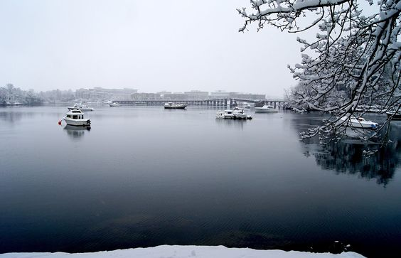 Boats in the snow from Bamfield Park