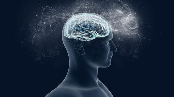 How The Brain Produces #Consciousness in Time Slices   #Neuroscience ✻