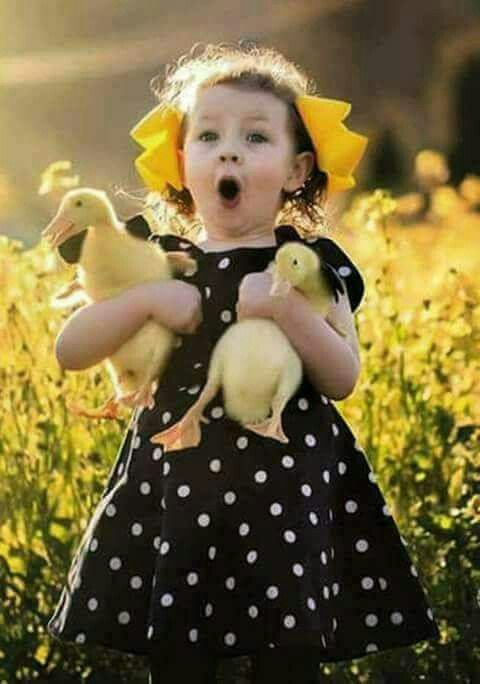 little girl & her baby ducks