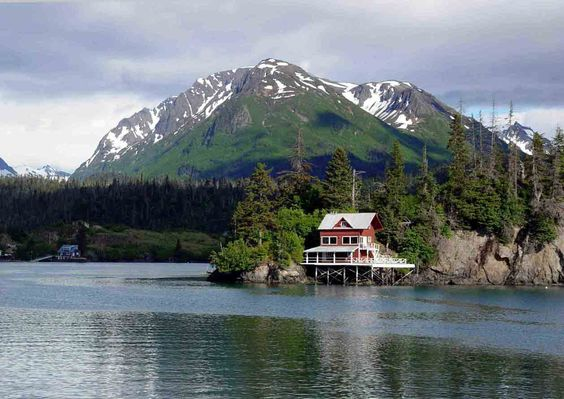 Halibut Miss Alaska And Cove On Pinterest