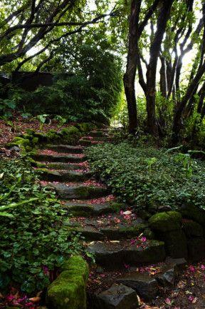 Blue Mountains country garden
