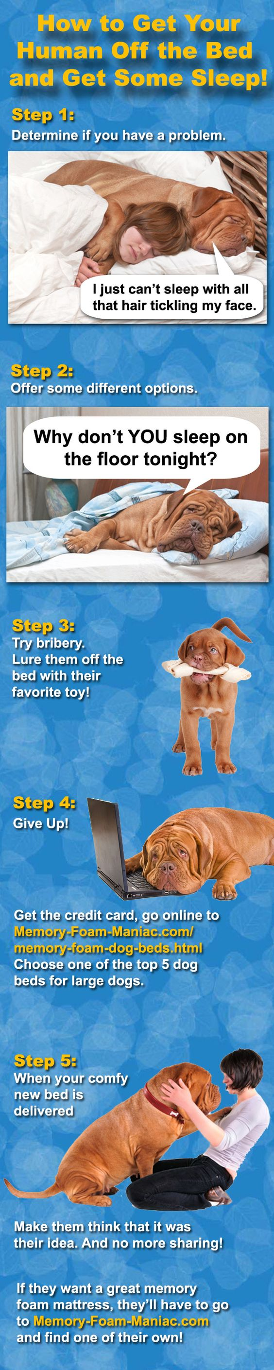 Memory foam dog beds for large dogs. http://www.memory-foam-maniac.com/ memory-foam-dog-beds.html#DogBeds-BIG | Memory-Foam-Maniac.com | Pinterest  | Betten, ...