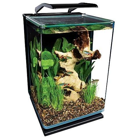 Marineland 5 Gallon Portrait Glass Led Aquarium Kit Aquarium Kit Betta Fish Tank Aquarium
