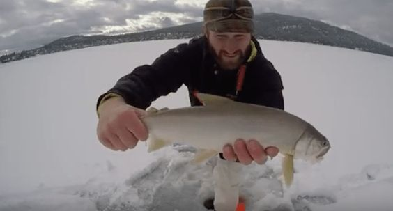 Ice Fishing in Montana for Huge Lake Trout