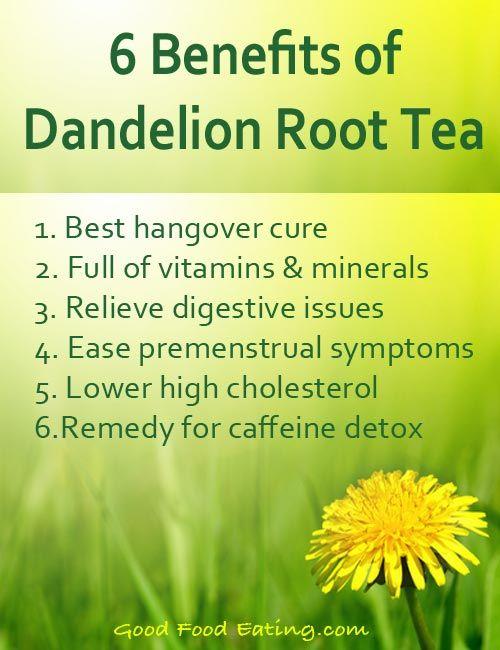 Benefits of Dandelion root tea from Good Food Eating