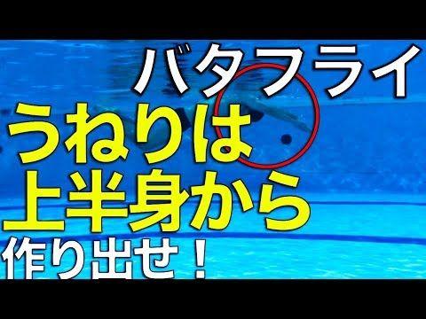 94 バタフライ うねり ができない方必見 ドルフィンキック 最速でコツを掴む 練習方法 Youtube バタフライ 水泳教室 マンツーマン
