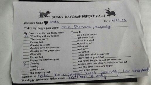 Dog Daycare Report Card Awesome Report Card From Best Friends Doggy Daycare Barkworld Dog Daycare Report Card Report Card Template