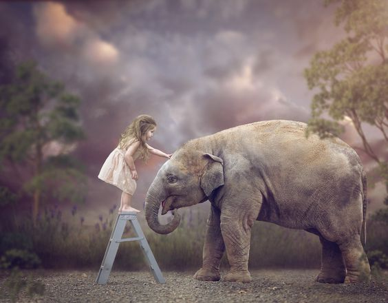 Hello friend - Little girl with elephant composite: