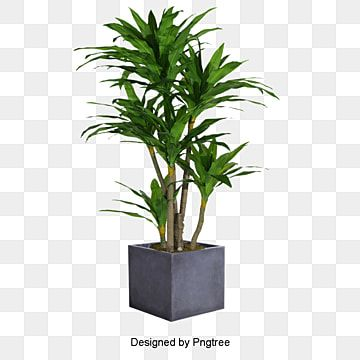 Plant Gardening Pot Png Transparent Clipart Image And Psd File For Free Download Plants Painted Plant Pots Plant Background