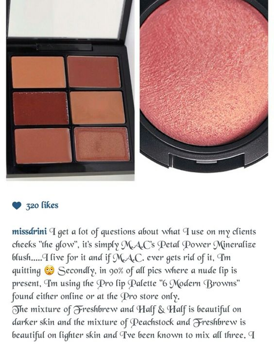 Mac petal power mineral blush