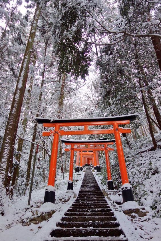 伏見稲荷大社 Torii gates in winter's snow: