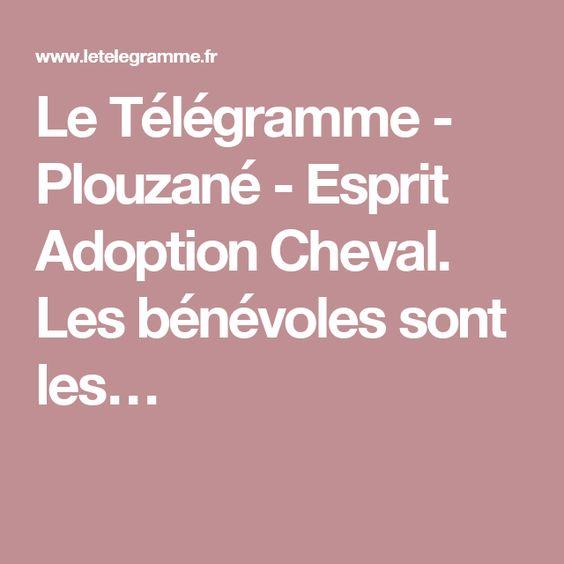 Le Télégramme - Plouzané - Esprit Adoption Cheval. Les bénévoles sont les…