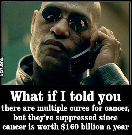 This is not just a conspiracy theory. A lady discovered an HERBAL cure for cancer and she healed over 85 patients with cancer, but before she even got started..the government came in and shut her down. Nobody wants to stop all the income. Our nation is greedy and despicable. It's disgusting.