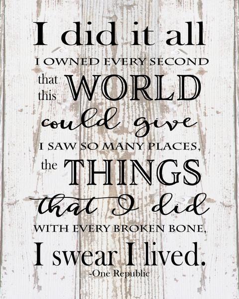 I Did It All I Swear I Lived One Republic Lyrics Heartland Canvas And Signs One Republic Lyrics Song Lyrics Art Lyrics To Live By