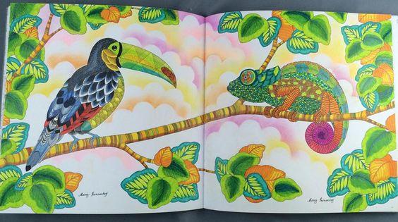 «Perfect combination : Animal Kingdom : Millie Marotta : Prismacolor premier pencils, Stabilo power pens, Colleen pencils, Mungyo soft pastels…»