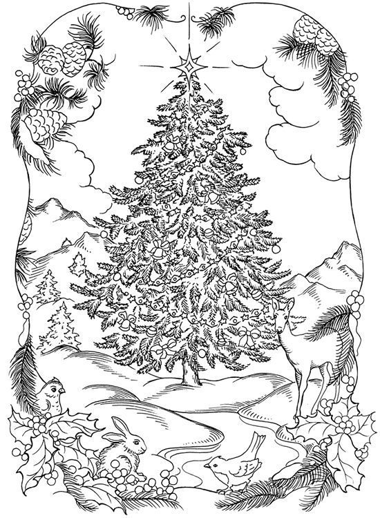 Winter Christmas Tree Coloring Pages For Adults Omalovanky Obrazky Silhouettes