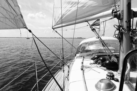 Ceive no mar de Grevelingen