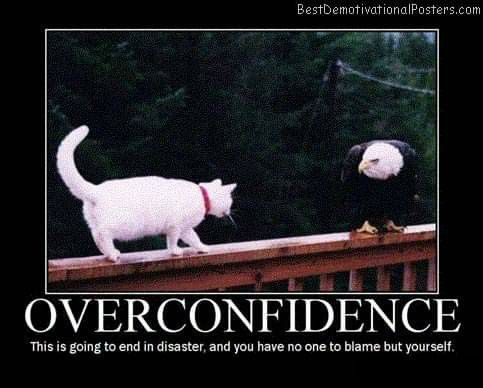 Pin By Skylight112 On Animals Funny Cat Pictures Funny Posters Funny Motivational Memes