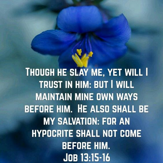 Job 13:15-16 (KJV)